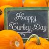 Happy Turkey Day on blackboard