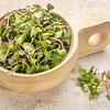 organic micro greens