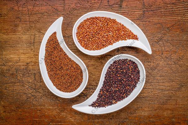 kaniwa, red and black quinoa grain