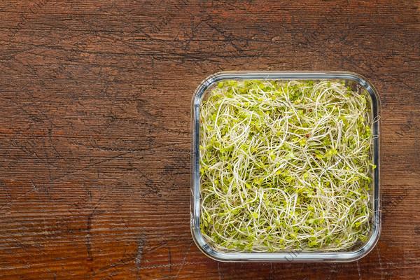broccoli and radish sprouts
