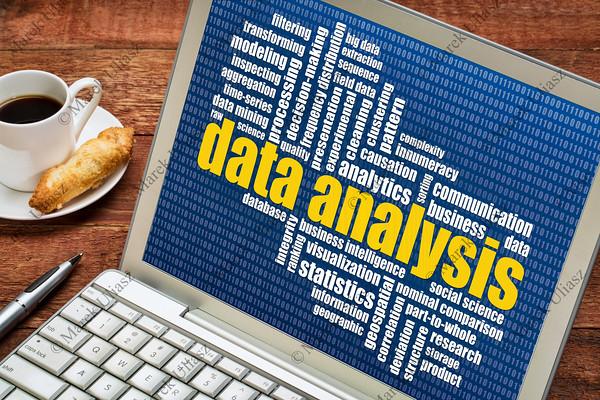 data analysis word cloud on laptop