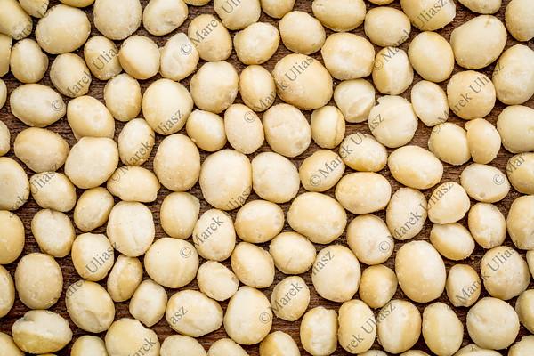 macadamia nuts background texture