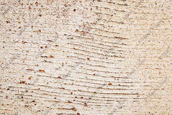 grunge white painted barn wood texture
