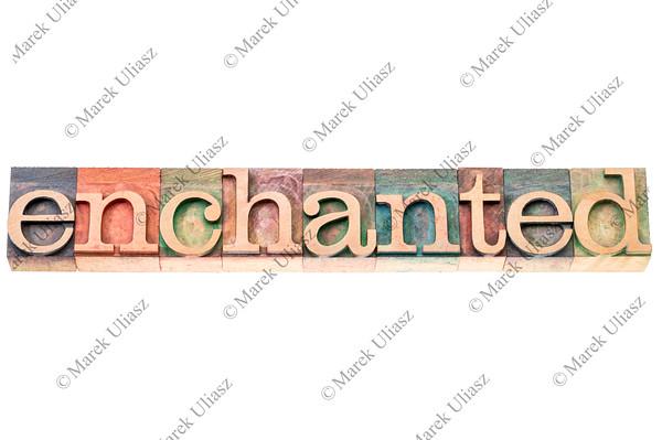 enchanted word typography