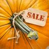 sale price tag on pumpkin