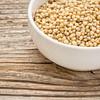 white sorghum grain