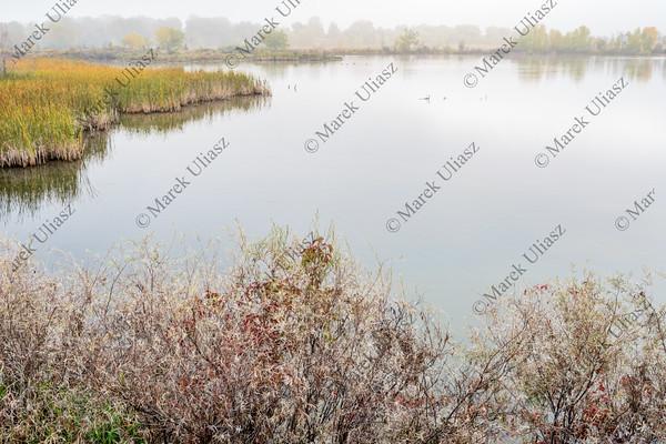 foggy fall day over calm lake