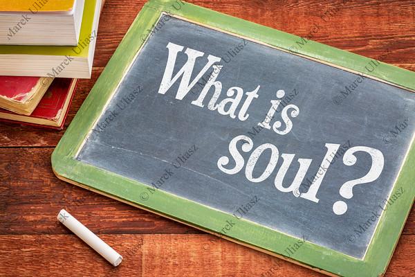What is soul question on blackboard