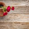 red roses against rustic wood
