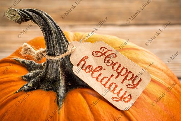 Happy holidays price tag on pumpkin