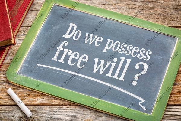 Do we possess free wil question on blackboard