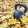 exercise kettlebell in maple leaves
