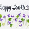 Happy birthday greetings with viola flowers