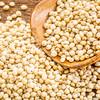 scoop of sorghum grain