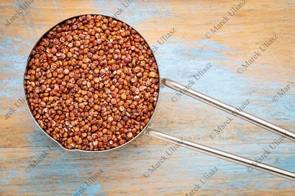 scoop of red quinoa grain
