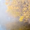 fog over lake on November morning
