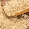 amarnath grain scoop