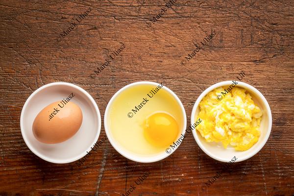 scrambled egg abstract