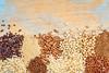gluten free grains background abstract