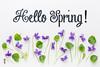 Hello Spring greetings