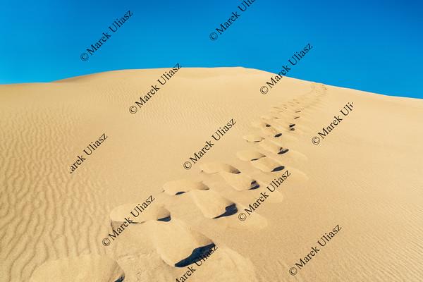 man footprints on sand dune