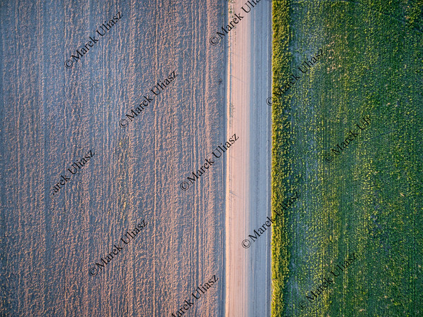 dirt road, plowed field and meadow