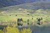 Colorado foothills at springtime