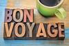 Bon Voyage in wood type