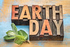 earth day in wood type