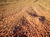 desert aerial view at sunrise