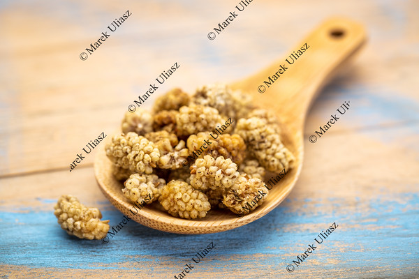 spoo nof dried white mulberries