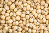 sorghum grain background