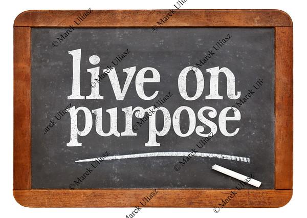 Live on purpose blackboard sign
