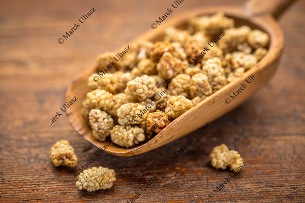 scoop of dried white mulberries