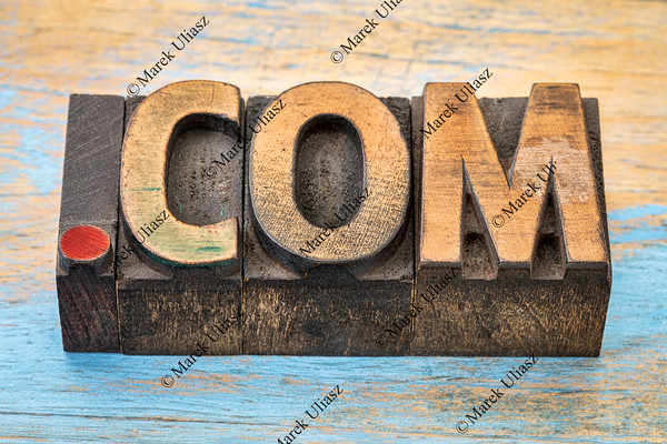 dot com business internet domain
