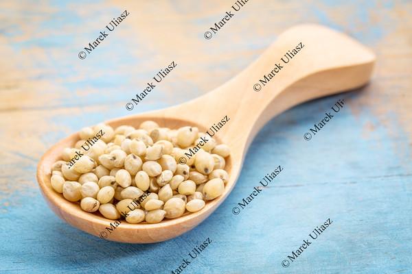 sorghum grain in wooden spoon