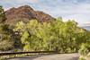 springtime in mountain canyon