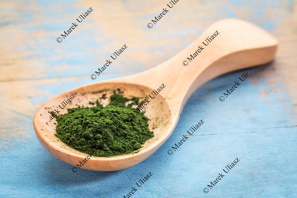 chlorella powder on wooden spoon