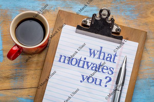 What motivates you question
