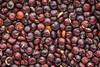 black quinoa grain macro