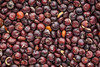 black quinoa grain macro