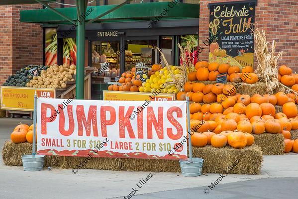 pumpkins on sale
