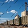 coal train in northern Colorado