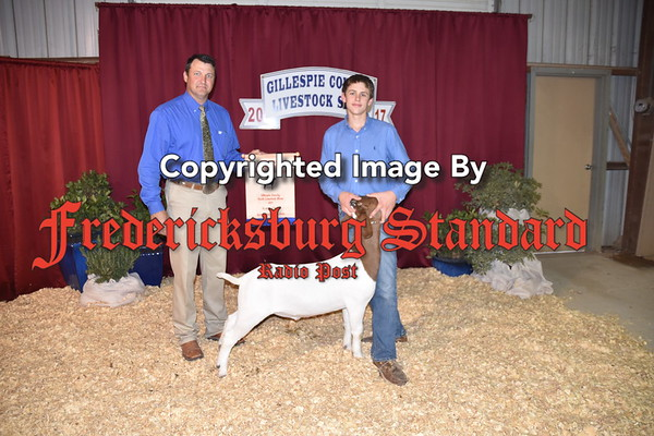 Stock show winners 1 of 2 1-18-17