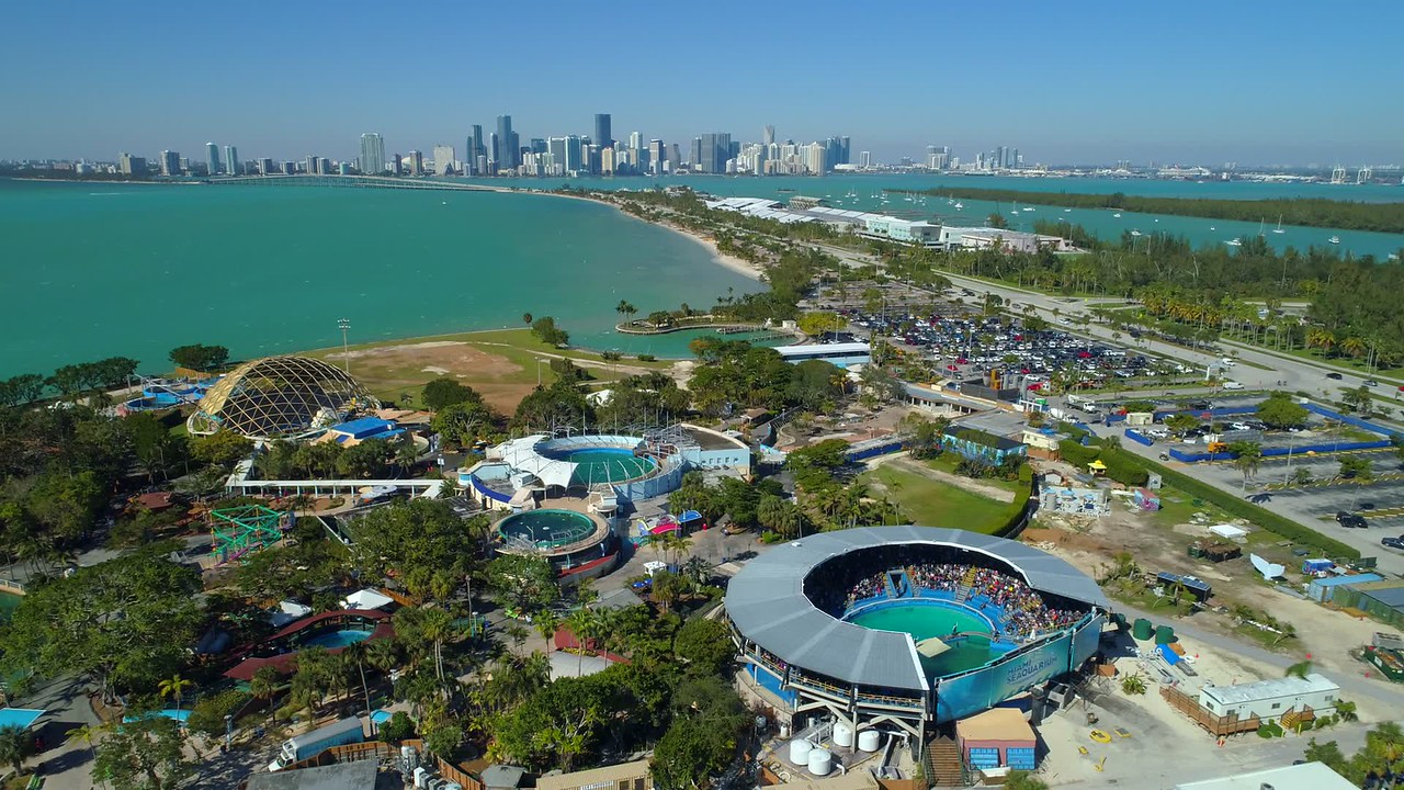 Miami Seaquarium killer whale show aerial drone footage 4k