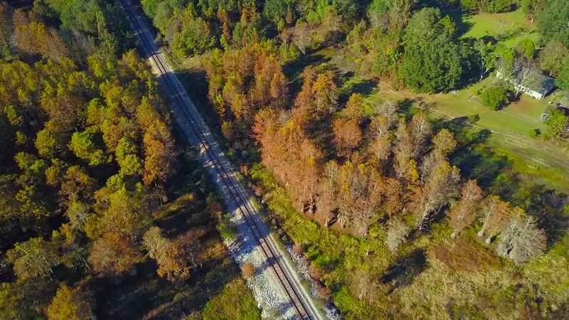 Railroad tracks through the woods foliage