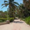 Miami Beach Ocean Walk after Hurricane Irma debris