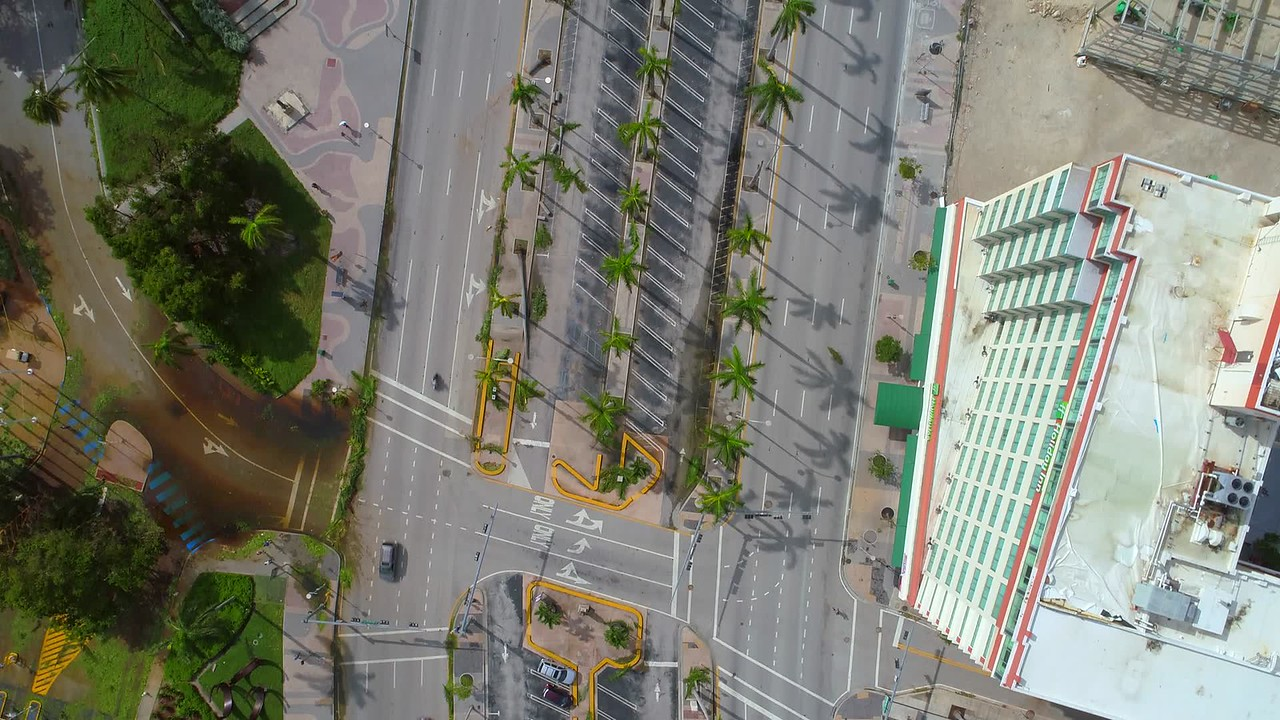 Aerial footage debris and fallen palm trees Downtown Miami Hurricane Irma