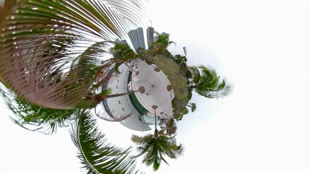 Tiny miniature planet of palm trees Museum Park Miami