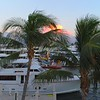 Aerial droen rising over palm trees to reveal yachts
